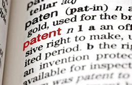 patent term in dictionary